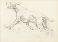 Sketch of a Pointer
